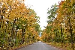 Autumn splendour