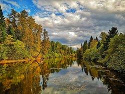 Un lac et sa foret proche du Gite Le Grandelinois en automne.