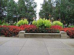 Attractive colourful border