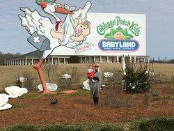 Welcome to BabyLand General Hospital!