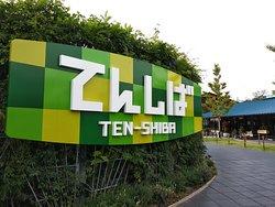 TEN-SHIBA