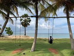 The swings in front of our room