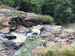 Пёсик Би купается в водопаде - секрет его белой шерстки