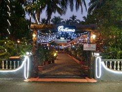 Octima Restaurant & Bar