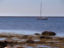 DuBois Beach Stonington Point, CT - Sailboat Passing Beach