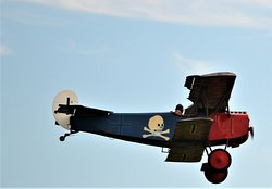 WWI fly-In D VII