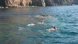 Superb snorkeling