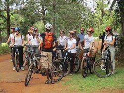 Bikeventures Tours and Rentals