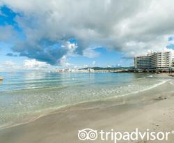 Beach at the Marina Playa Hotel & Apartments