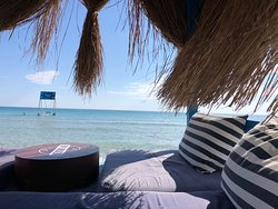 Dharma Beach Club