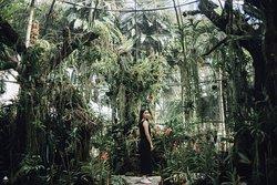 Botanic Garden in Horizon Village