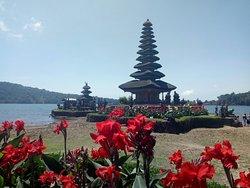 Bali landscapes