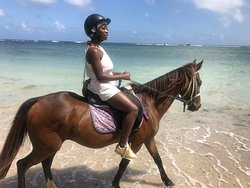 I'd never rode a horse before and by the end of the trail i was a professional lol