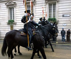 There are lots of horses in the Lord Mayor's Show in the City of London