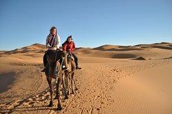 The Sahara's Desert!