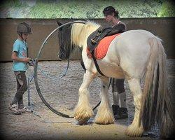 Enseignement de qualité, avoir le temps de rencontrer le cheval...