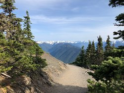 Looking east from a trail that started at the Hurricane Ridge Visitor Center.