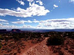 Murphy Point Trail