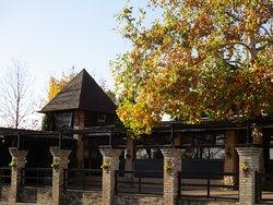 façade (Fekete Golya signifie cigogne noire)
