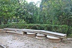 Athen - National Garden 13