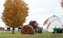 Wolcott Mill Metropark Farm Center