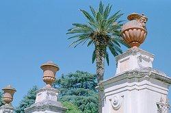 Orto Botanico di Roma