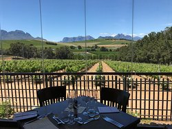 Fabulous Estate with Wine-Food Pairing!