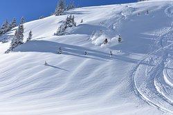 スキー & 雪ツアー