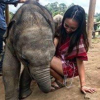 Elephant Pride Sanctuary