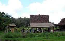 Farm House, Bali Organic Farm