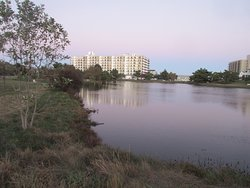 Part of the lake and lakeside park