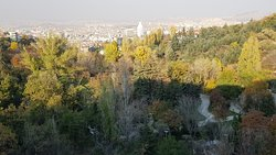 Botanik Parki