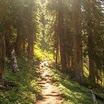 Maroon-Snowmass Trail