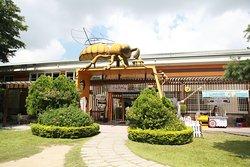 蜜蜂故事馆
