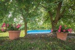 piscina in relax