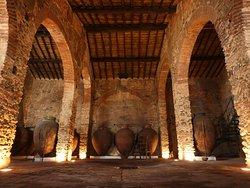 Cella Vinaria Antiqua