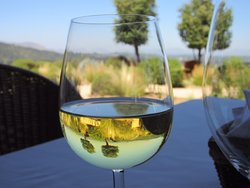 One of my favorite photos from a lovely lunch at Lapostolle in the Colchagua wine region in Chilé