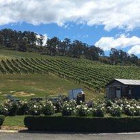 Elmslie Winery