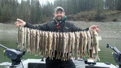 Catch Walleye in big numbers!