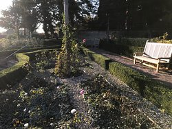 Rose beds and seating