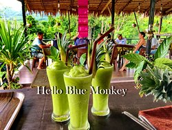 Hello Blue Monkey