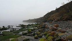 Cape Pakri