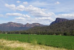 View as you drive into Coorongooba Campground