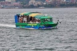 Harbour Hopper Tours
