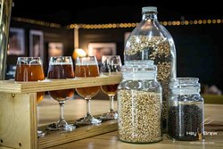 Hey Brew Craft Beer Tasting Tours