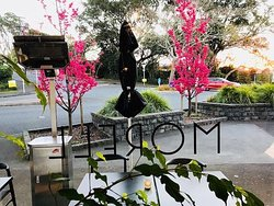 Beautiful blooms outside Morell