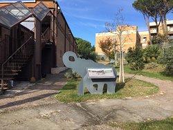 Museo di Casal de' Pazzi