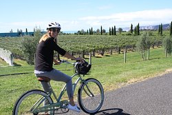 Coastal Wine Cycles