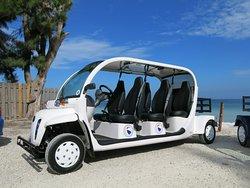 AMI Beach Buggys