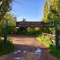 Barling Magna Wildlife Reserve